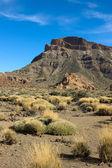 долина вулкан тейде, тенерифе, испания — Стоковое фото