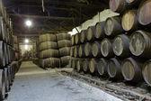 Cellar with wine barrels — Stock Photo