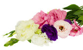 Bouquet of eustoma flowers — Stock Photo