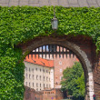 Gate to royal castle, Krakow, Poland — Stock Photo #9463619