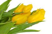 Yellow tulips bouquet — Stock Photo