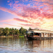House boat in backwaters — Stock Photo #10498968