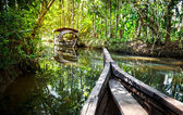 Boat in backwaters jungle — Stock Photo