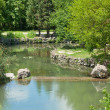 Wonderful pond — Stock Photo