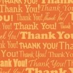Thank You — Stock Vector #8858361