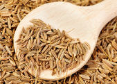Cumin seeds and wooden spoon as background — Stock Photo