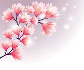 Magnolia Flowers — Stock Vector