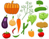 Set of colorful vegetables — Stock Vector