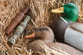 Duck decoy with stuffed and calls — Stock Photo