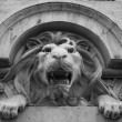 Lissabon, lion - Stock Photo
