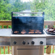 Pork steaks on gas grill — Stock Photo #9015013