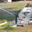 Sprinkler watering grass. — Stock Photo