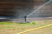 Sprinkler, bewässerung gras. — Stockfoto