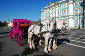 Horses in harness and carriage near Hermitage. — Stock Photo