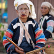 PAI, THAILAND - FEB 3: Unidentified Lahu tribe old womwith lu — Foto de stock #9100188