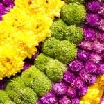 Fresh flowers — Stock Photo #9100713