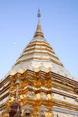 Estupa dorada — Foto de Stock