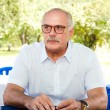 Director Nikita Mikhalkov - Stock Photo