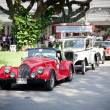 Cars row on Vintage Car Parade - Stock Photo