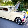 Stock Photo: Mercedes Benz 170 S on Vintage Car Parade