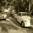 Stock Photo: Triumph cars on Vintage Car Parade