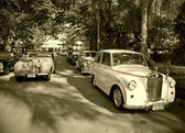 Triumph cars on Vintage Car Parade — Stock Photo