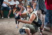 GIANYAR, BALI, INDONESIA- MAY 21: Unidentified villager demonstrates his cock before the fight at the Balinese Temple during the Odalan Festival on May 21, 2011 in Gianyar, Bali, Indonesia. — Stock Photo