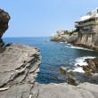 Italian Riviera coast — Stock Photo #9698547
