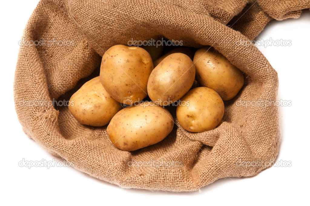 Ripe fresh potato tubers in brown sackcloth  Stock Photo #8561911