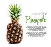Pineapple — Foto Stock