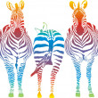 Stock Vector: Rainbow zebra
