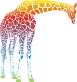 Rainbow giraffe vector — Stock Vector