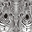 Zebra pattern background — Stock Vector