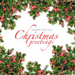 Stock Photo: Red berries Christmas garland