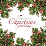 Red berries Christmas garland — Stock Photo
