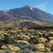 El Teide summit desert — Stock Photo