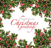 Red berries Christmas garland — Stock Photo