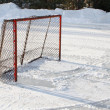 Ice hockey goal — 图库照片