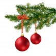Two red glass balls on Christmas tree branch — Stock Photo #9352622
