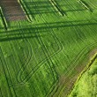 Agricultural land — Stock Photo #9354594