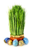 Easter grass and eggs — Stock Photo