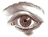 Human eye old engraving — 图库照片