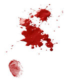 Blood stains and fingerprint — Stock Photo