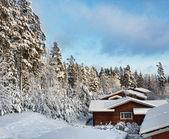 日志房子多雪的冬天的景色 — 图库照片
