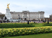 Buckingham Palace in spring — Stock Photo