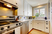 White kitchen with stainless steal appliances. — Stock Photo