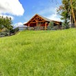Log cabin on the hill with fresh green grass. — Stock Photo