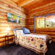Log cabin rustic bedroom with blue curtains. — Stock Photo