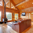 Stock Photo: Luxury log cabin living room with leather sofa.