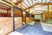 Horse farm stable shed interior. — Stock Photo